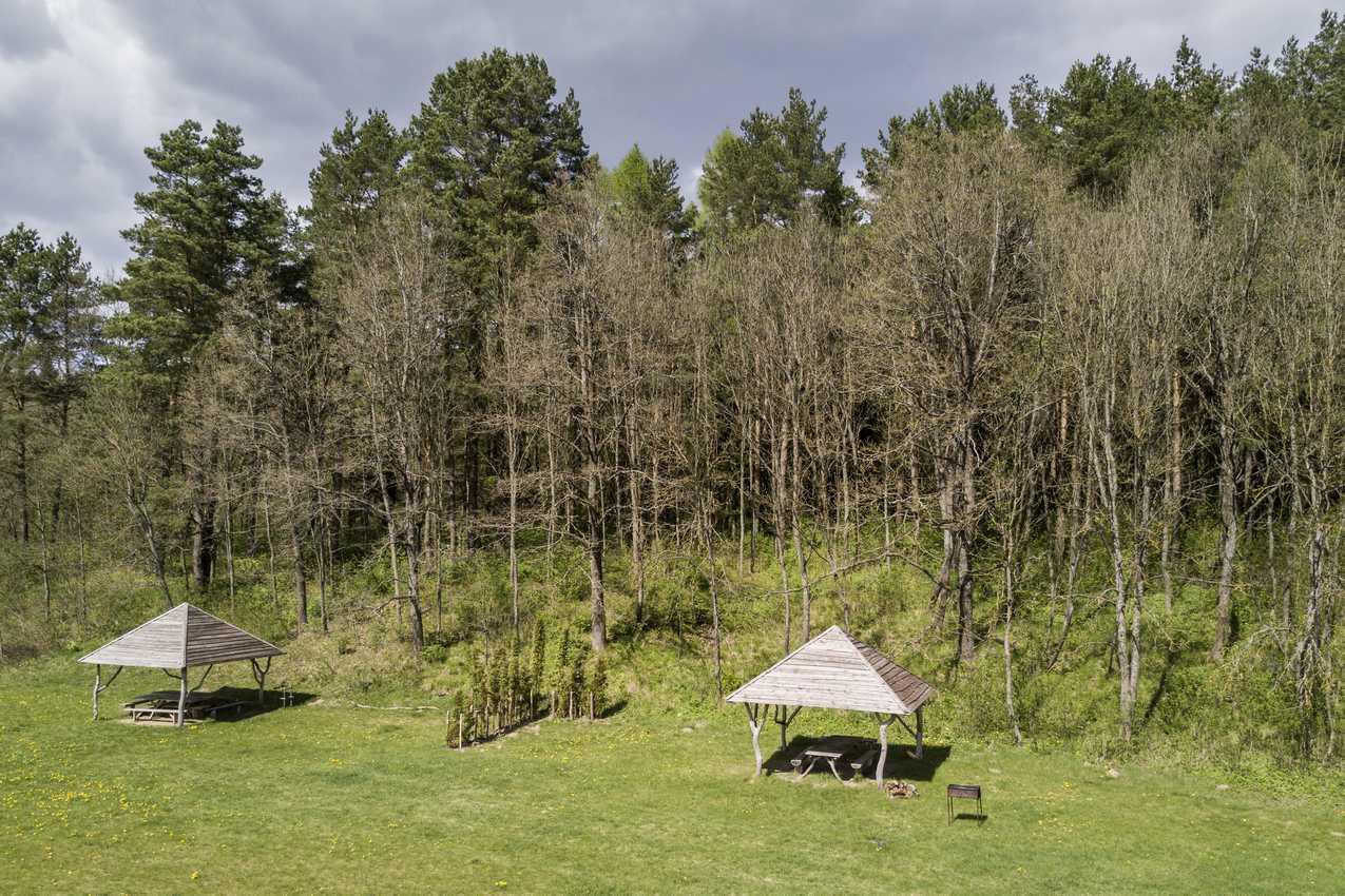 stovyklai-2